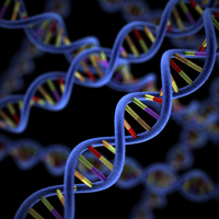 A Tool for Editing the Genome